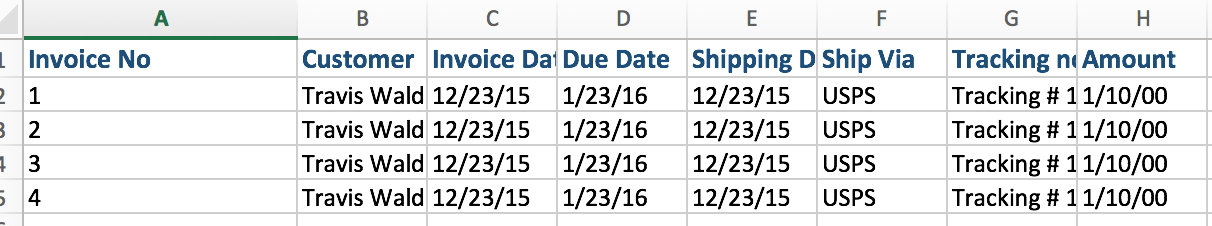 File Format Guidelines for Excel Transactions